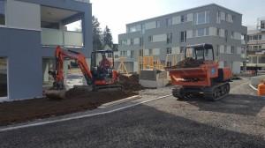 Gartengestaltung Mehrere MFH Altstätten